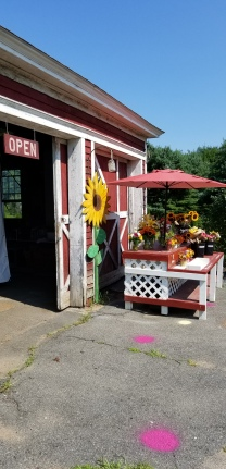 Welcome to our little Farm Stand+